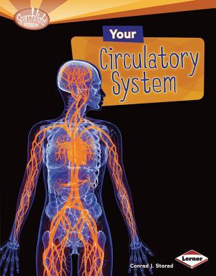 Your Circulatory System By Storad, Conrad J.